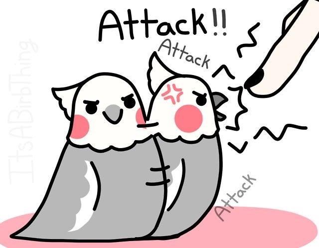 Cartoon - Attack!! Attack Attack