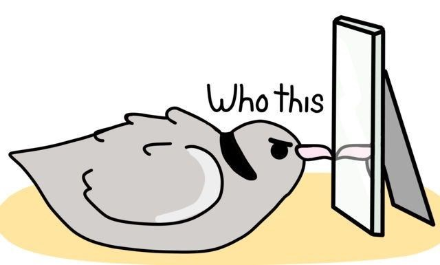 Clip art - Who this