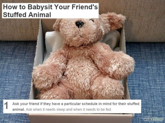 wikihow meme - Teddy bear - How to Babysit Your Friend's Stuffed Animal 1 animal. Ask when it needs sleep and when it needs to be fed Ask your friend if they have a particular schedule in mind for their stuffed wikielow