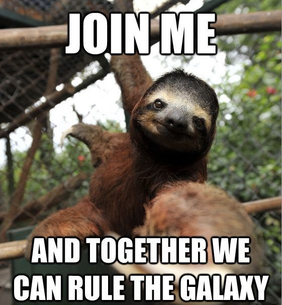 sloth meme of a sloth hanging from a branch and reaching out his hand towards the camera