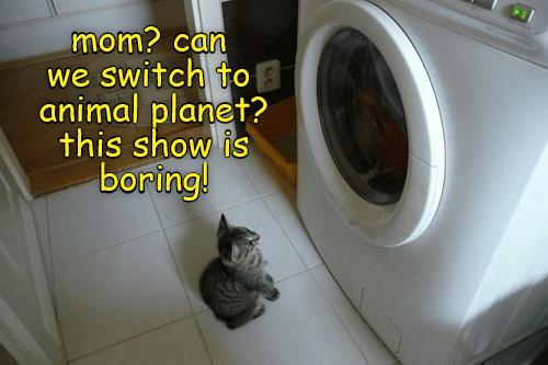 Washing machine - mom? can we switch to animal planet? this show is boring!