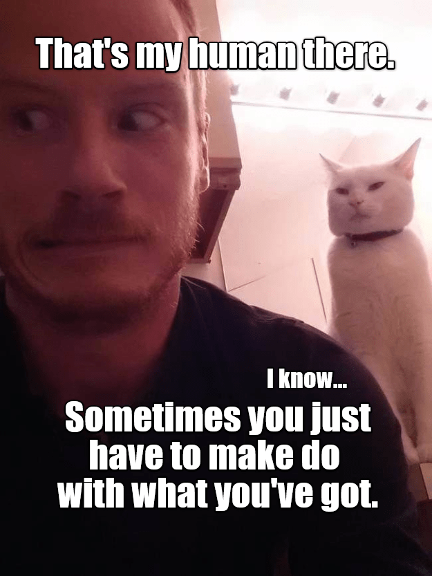 Cat - That's my human there. I know... Sometimes you just have to make do with what you've got.