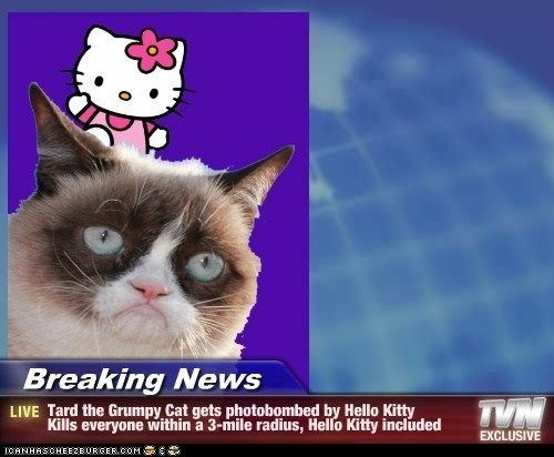 Cat - Breaking News TVN LIVE Tard the Grumpy Cat gets photobombed by Hello Kitty Kills everyone within a 3-mile radius, Hello Kitty included EXCLUSIVE ICANHASCHEE2EURGER CcOM