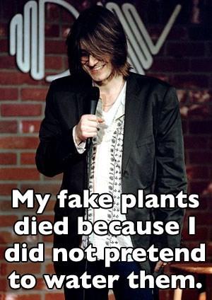 Mitch Hedberg joke about fake plants needing to be fake watered