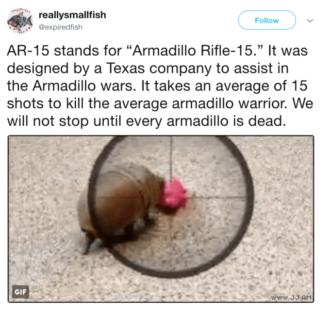 """Organism - reallysmallfish Follow @expiredfish AR-15 stands for """"Armadillo Rifle-15."""" It was designed by a Texas company to assist in the Armadillo wars. It takes an average of 15 shots to kill the average armadillo warrior. We will not stop until every armadillo is dead. GIF www.3J.AM"""