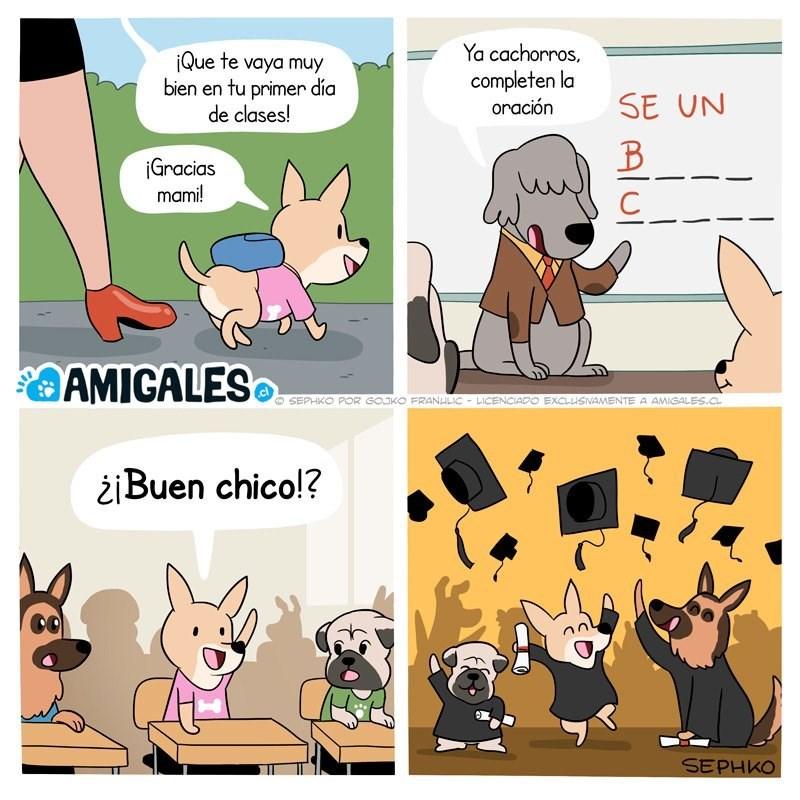 escuela de formacion canina SephkoComics