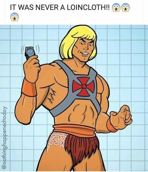 Funny meme about he-man's loincloth being pubes.