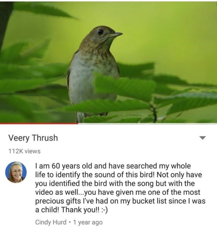 happy meme about elderly person getting a gift in the form of a bird's song