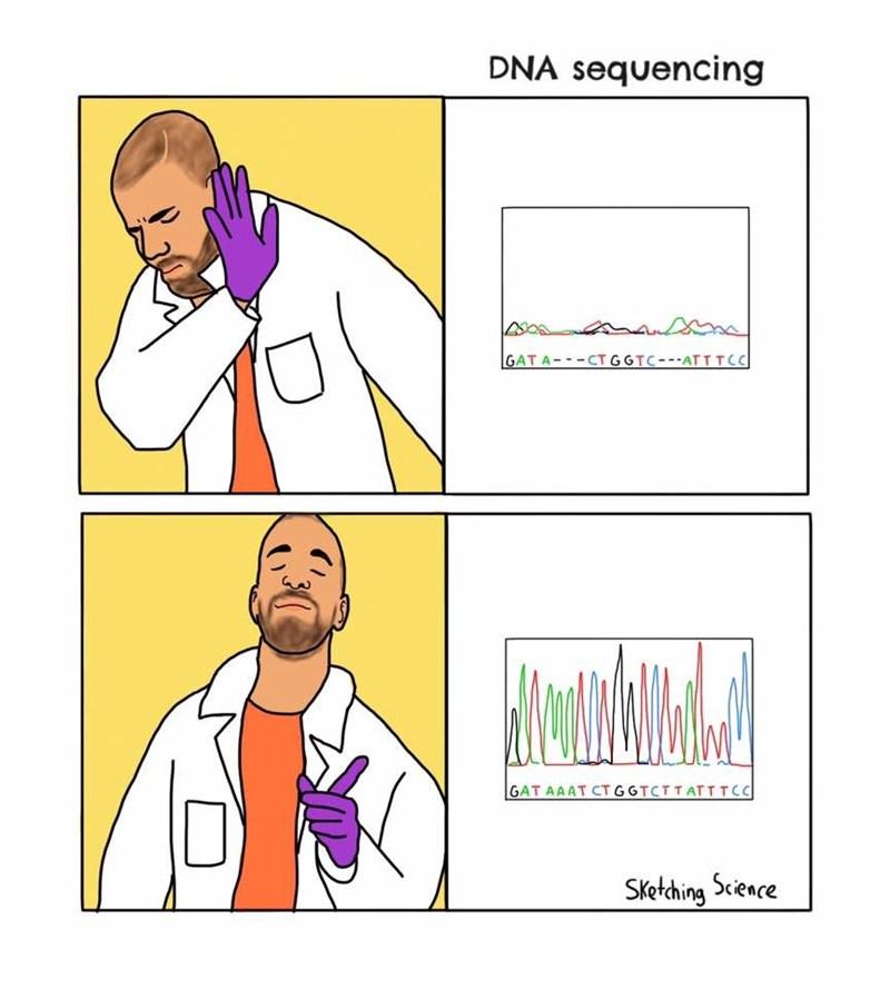 Cartoon - DNA sequencing Aద GAT A--CTGGTC-ATTTCC GAT AAAT CTGGTCTTATTTCC Sketching Science