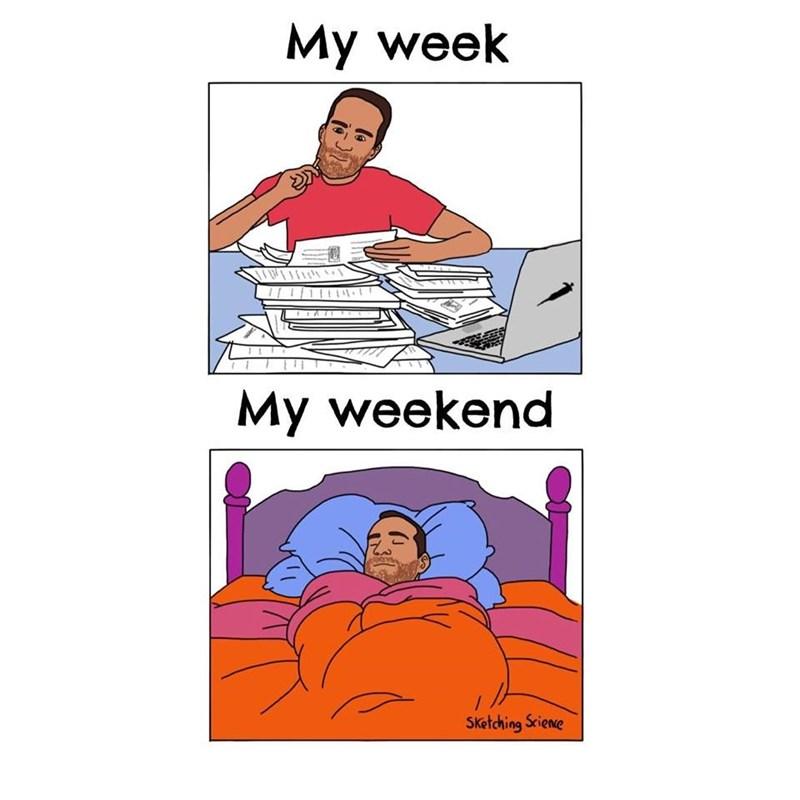 Line - My week My weekend Sketching Sciene