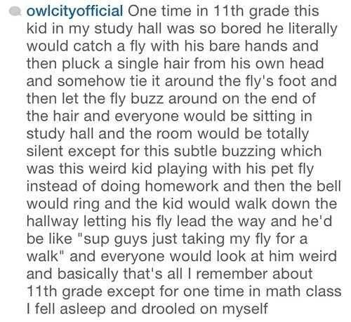 Text - owlcityofficial One time in 11th grade this kid in my study hall was so bored he literally would catch a fly with his bare hands and then pluck a single hair from his own head and somehow tie it around the fly's foot and then let the fly buzz around on the end of the hair and everyone would be sitting in study hall and the room would be totally silent except for this subtle buzzing which was this weird kid playing with his pet fly instead of doing homework and then the bell would ring and