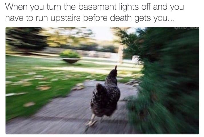 Nature - When you turn the basement lights off and you have to run upstairs before death gets you...