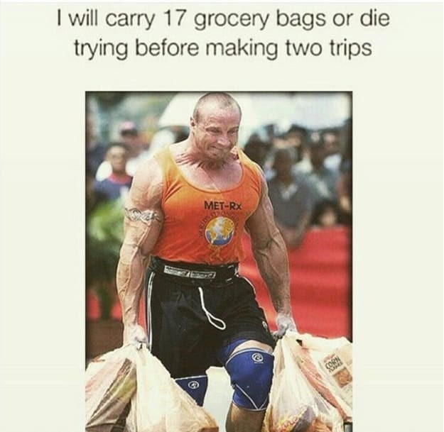 Human - I will carry 17 grocery bags or die trying before making two trips MET-RX CORN