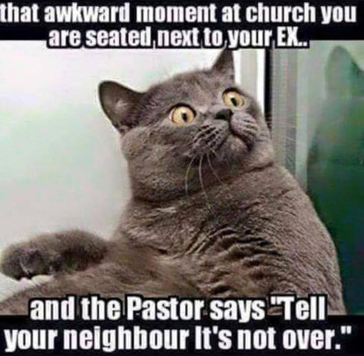 Cat - that awkward moment at church you are seated next to your E.. and the Pastor says Tell your neighbour It's not over.""