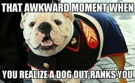 Dog - THAT AWKWARD MOMENT WHEN YOU REALIZEADOGOUTRANKS YOU