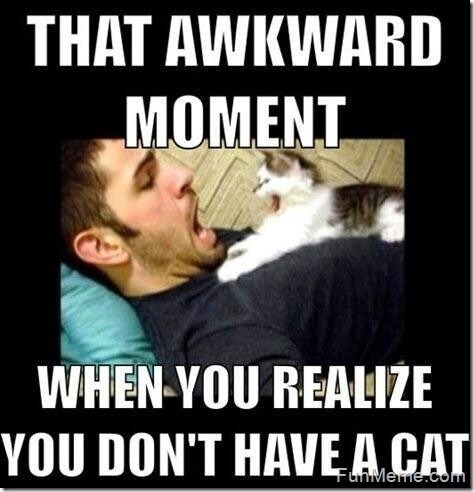 Photo caption - THAT AWKWARD MOMENT WHEN-YOU REALIZE YOU DON'T HAVE A CAT FunMeme.com