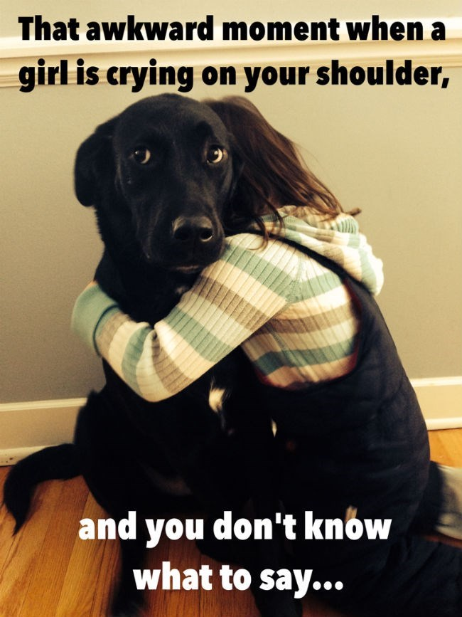 Dog - That awkward moment when a girl is crying on your shoulder, and you don't know what to say...