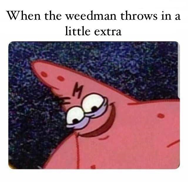 Text - When the weedman throws in little extra