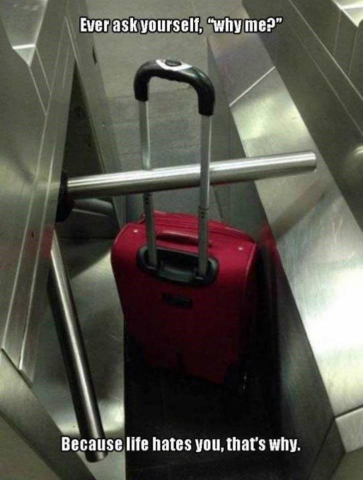 """Suitcase - Ever askyourself, why me?"""" Because life hates you, that's why."""