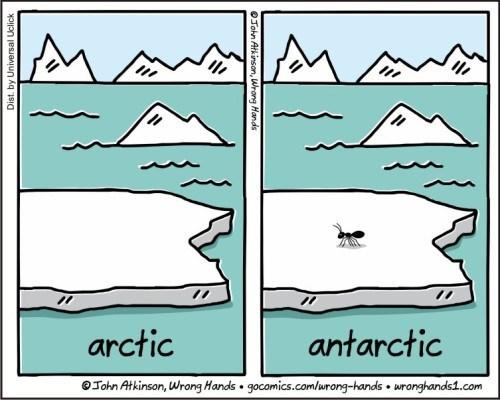 arctic antarctic Tohn Atkinson, Wrong Hands gocomics.comlurong-hands uronghands.com John Atkinson, Wrong Hands llin liluun Kq si