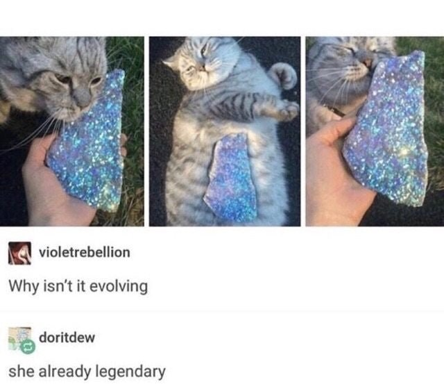 Cat - violetrebellion Why isn't it evolving doritdew she already legendary