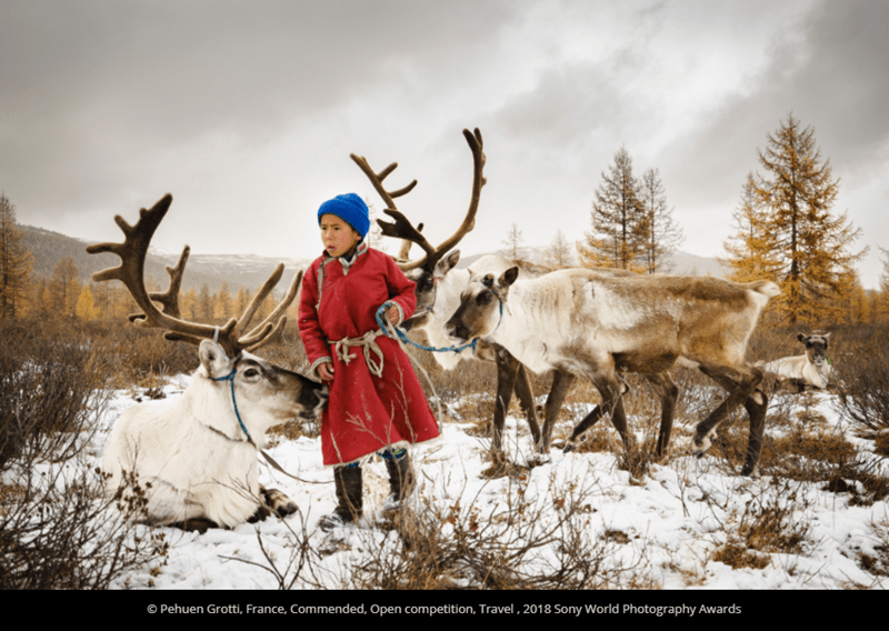 Reindeer - O Pehuen Grotti, France, Commended, Open competition, Travel , 2018 Sony World Photography Awards