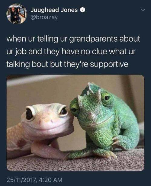 positive Thrusday meme about grandparents being supportive with pic of two lizards smiling sweetly