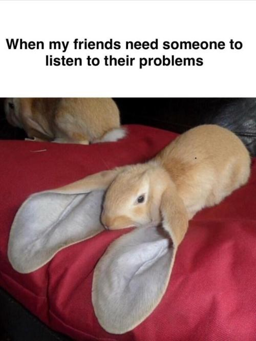 positive Thrusday meme about being all ears listening to your friends