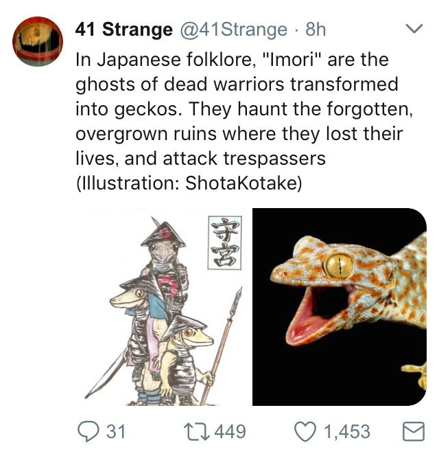 """Organism - 41 Strange @41 Strange 8h In Japanese folklore, """"Imori"""" are the ghosts of dead warriors transformed into geckos. They haunt the forgotten, overgrown ruins where they lost their lives, and attack trespassers (Illustration: ShotaKotake) 31 1.449 1,453"""