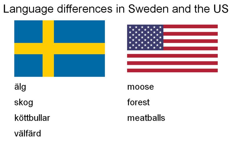 Text - Language differences in Sweden and the US älg moose skog forest köttbullar meatballs välfärd