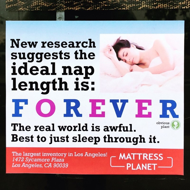 Funny meme about napping forever.
