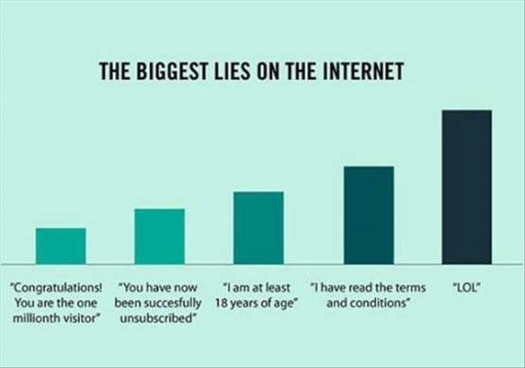 Funny meme about internet lies.