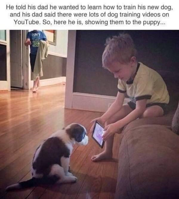 Dog - He told his dad he wanted to learn how to train his new dog, and his dad said there were lots of dog training videos on YouTube. So, here he is, showing them to the puppy..