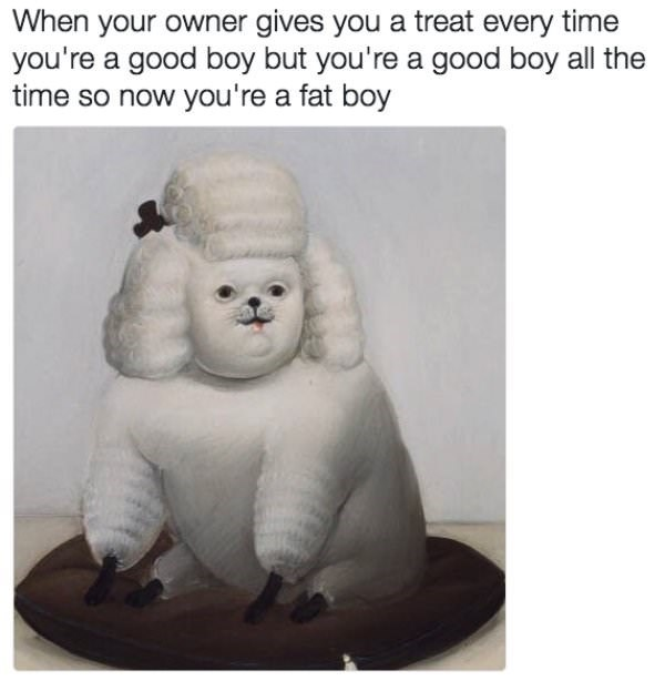 Organism - When your owner gives you a treat every time you're a good boy but you're a good boy all the time so now you're a fat boy
