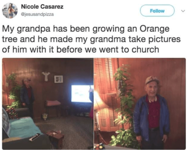 Text - Nicole Casarez Follow @jesusandpizza My grandpa has been growing an Orange tree and he made my grandma take pictures of him with it before we went to church