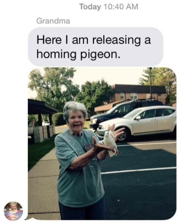 Vehicle door - Today 10:40 AM Grandma Here I am releasing a homing pigeon