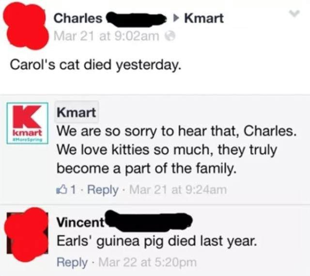Text - Charles Kmart Mar 21 at 9:02am Carol's cat died yesterday. K Kmart We are so sorry to hear that, Charles. We love kitties so much, they truly become a part of the family. kmart EMorepring 1 Reply Mar 21 at 9:24am Vincent Earls' guinea pig died last year. Reply Mar 22 at 5:20pm