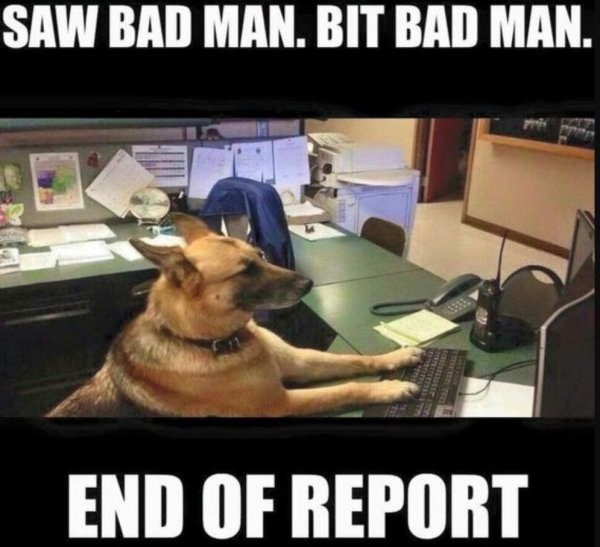dog meme of a service dog using a computer to report a bad man