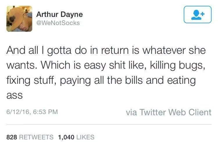 Text - Arthur Dayne @WeNotSocks And all I gotta do in return is whatever she wants. Which is easy shit like, killing bugs, fixing stuff, paying all the bills and eating ass via Twitter Web Client 6/12/16, 6:53 PM 828 RETWEETS 1,040 LIKES