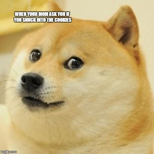 meme - Dog - WHEN YOUR MOMASK YOUIF YOU SNUCK INTO THECOOKIES imgt p com