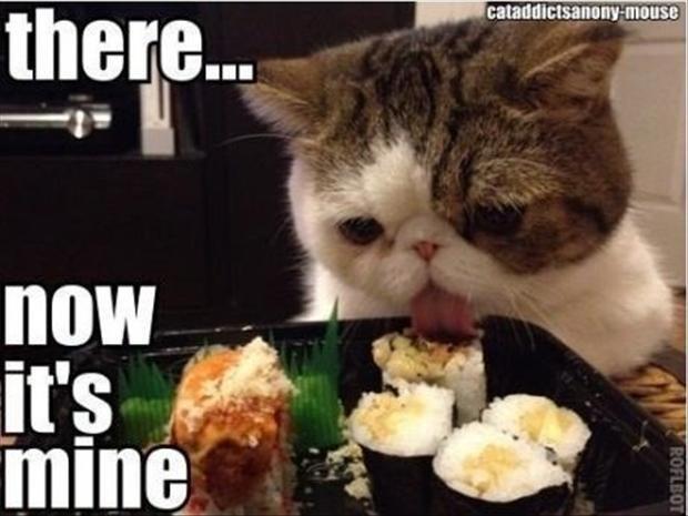 meme - Cat - there... cataddictsanony-mouse now it's mine ROFLBOT