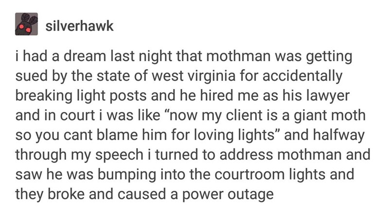 "funny tumblr - Text - silverhawk i had a dream last night that mothman was getting sued by the state of west virginia for accidentally breaking light posts and he hired me as his lawyer and in court i was like ""now my client is a giant moth so you cant blame him for loving lights"" and halfway through my speech i turned to address mothman and saw he was bumping into the courtroom lights and they broke and caused a power outage"