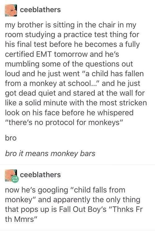 "funny tumblr - Text - ceeblathers my brother is sitting in the chair in my room studying a practice test thing for his final test before he becomes a fully certified EMT tomorrow and he's mumbling some of the questions out loud and he just went ""a child has fallen from a monkey at school..."" and he just got dead quiet and stared at the wall for like a solid minute with the most stricken look on his face before he whispered ""there's no protocol for monkeys"" bro bro it means monkey bars ceeblather"