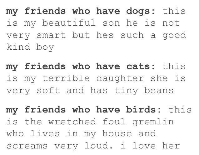 Tumblr post how animal owners regard their dogs, cats or birds