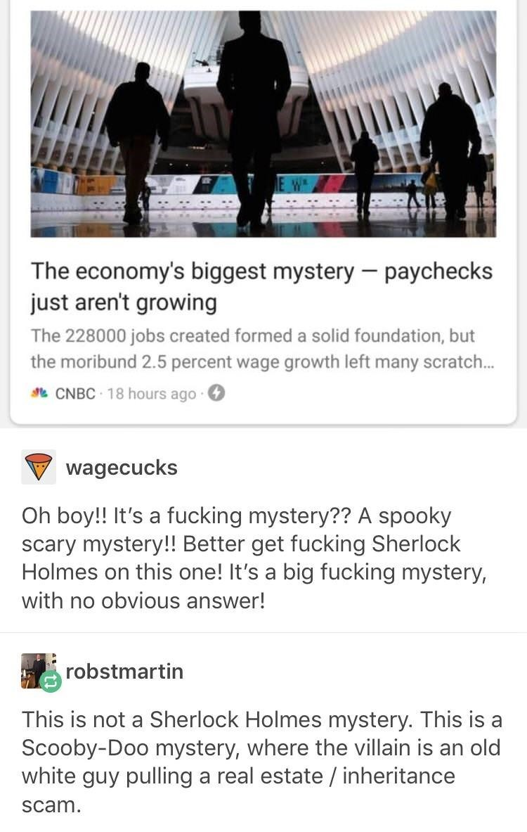 funny tumblr - Text - The economy's biggest mystery paychecks just aren't growing The 228000 jobs created formed a solid foundation, but the moribund 2.5 percent wage growth left many scratch... CNBC 18 hours ago wagecucks Oh boy!! It's a fucking mystery?? A spooky scary mystery!! Better get fucking Sherlock Holmes on this one! It's a big fucking mystery, with no obvious answer! robstmartin This is not a Sherlock Holmes mystery. This is a Scooby-Doo mystery, where the villain is an old white guy