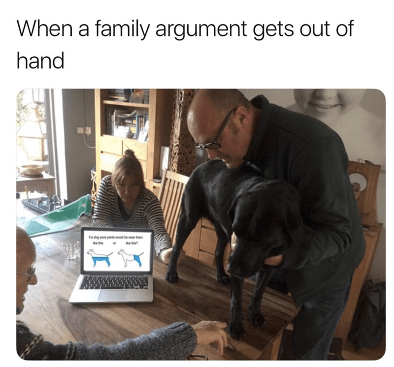 Dog - When a family argument gets out of hand dg wore parts wouhewar the the