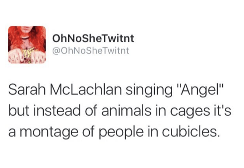 """Text - OhNoSheTwitnt @OhNoSheTwitnt Sarah McLachlan singing """"Angel"""" but instead of animals in cages it's montage of people in cubicles."""