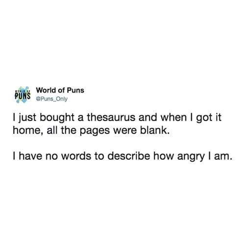 Text - World of Puns PUNS @Puns Only I just bought a thesaurus and when I got it home, all the pages were blank. I have no words to describe how angry I am