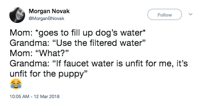 "Text - Morgan Novak Follow MorganBNovak Mom: ""goes to fill up dog's water* Grandma: ""Use the filtered water"" Mom: ""What?"" Grandma: ""If faucet water is unfit for me, it's unfit for the puppy"" 10:05 AM-12 Mar 2018 >"