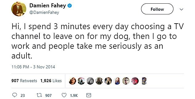 Text - Damien Fahey Follow @DamienFahey Hi, I spend 3 minutes every day choosing а TV channel to leave on for my dog, then I go to work and people take me seriously as an adult. 11:08 PM 3 Nov 2014 907 Retweets 1,926 Likes ti 907 23 1.9K
